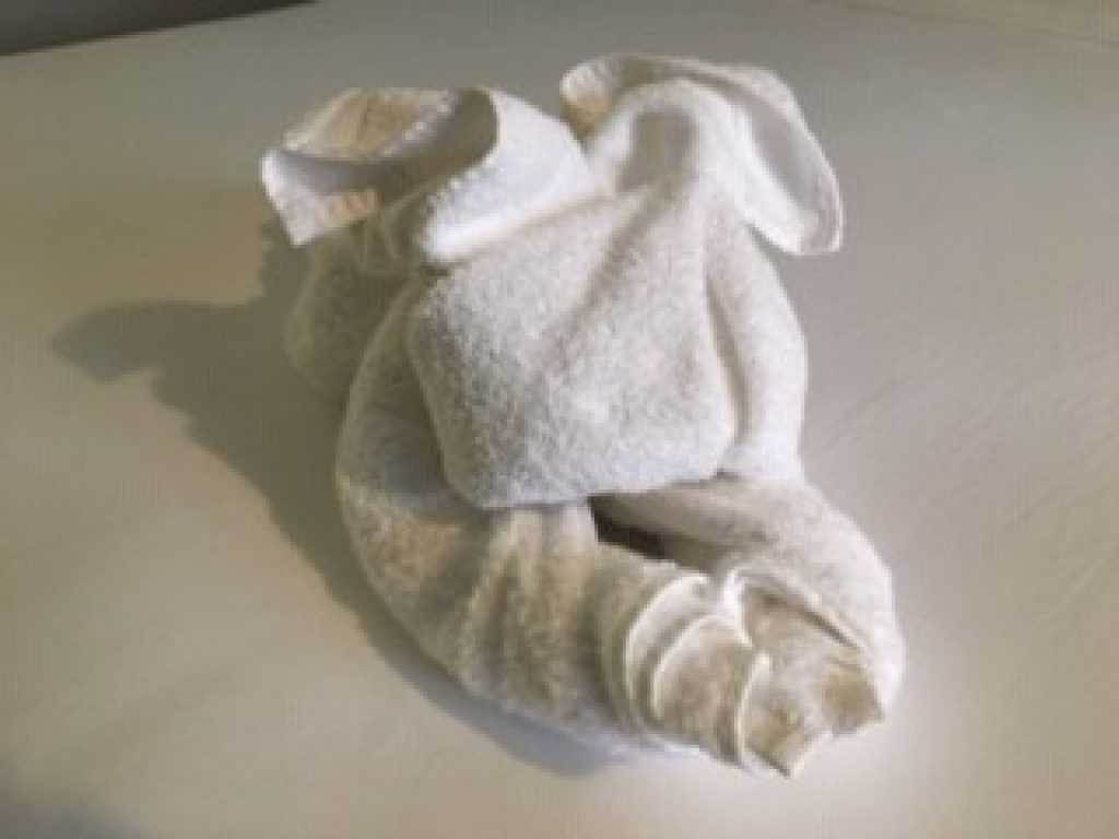 Towel Origami Airbnb
